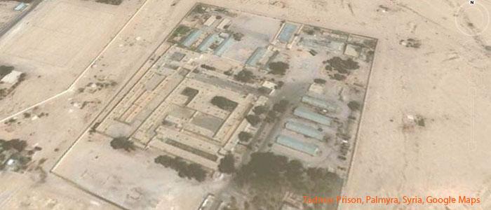 Palmyra_700
